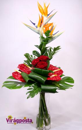 Virágposta - Love is a bird - egzotikus csokor vörös rózsákkal