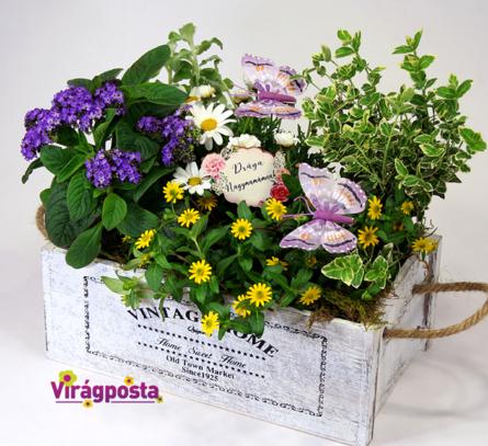 Virágposta - Drága Nagymami! - összeültetés faládikában