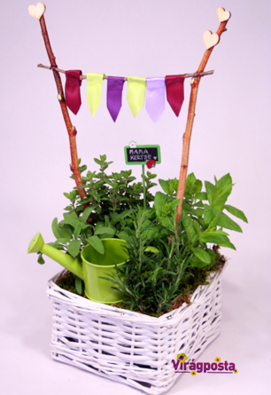 Virágposta - Mama fűszerkertje
