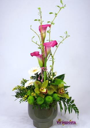 Virágposta - Orchideák és kálák