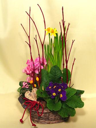 Virágposta - Tavaszi kosár ágakkal