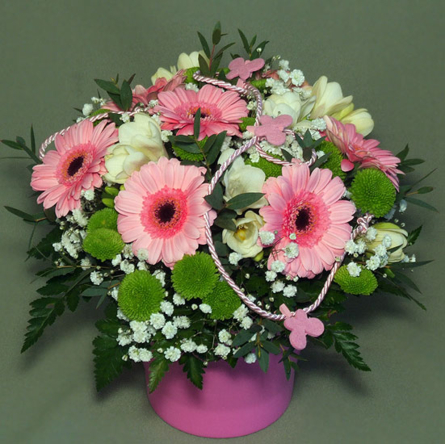 Virágposta - Virágtál rózsaszín minigerberákkal