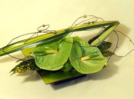 Virágposta - Modern virágtál zöld anthuriummal