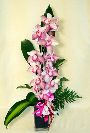 Virágposta - Orchidea ág Swarovskival
