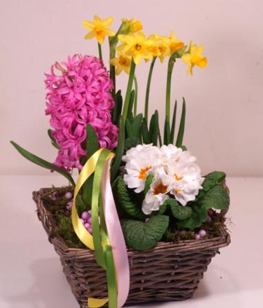 Virágposta - A tavasz kertje