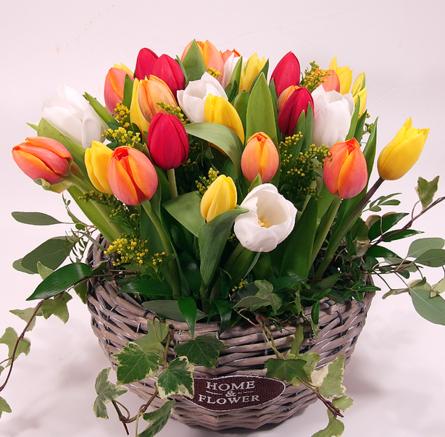 Virágposta - Szivárványos tulipán kosár