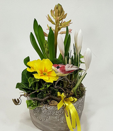Virágposta - Tavaszi növényösszeültetés - díszes kőtálban