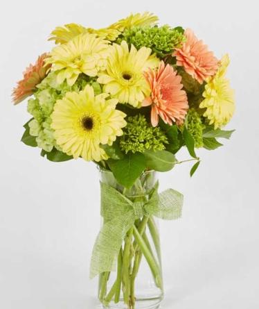 Virágposta - Ragyogj! - Vidám minigerberák kerek csokorban