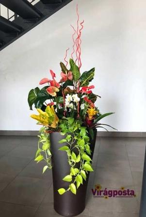 Virágposta - Óriás növénydekoráció - növényösszeültetés