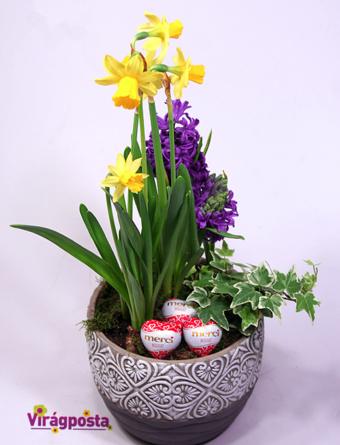 Virágposta - Tavaszi virágtál nárcisszal, jácinttal és csokiszívekkel - összeültetés díszes kaspóban